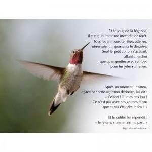 affiche-legende-colibri